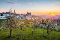 romantische Aussicht vom Petrin Hügel Prag bei Sonnenuntergang