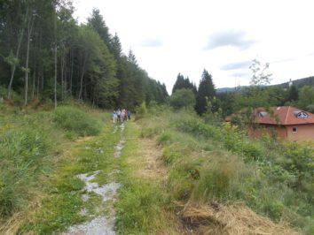 """Am Sonntag 9. Juli Flusswanderung am Regen im Nationalparkgebiet Bayerischer Wald in wunderschöner Umgebung und mit kulinarischen Bio-Genüssen im """"Haus zur Wildnis"""""""