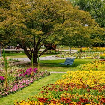 Verweilen im Blumenmeer im egapark