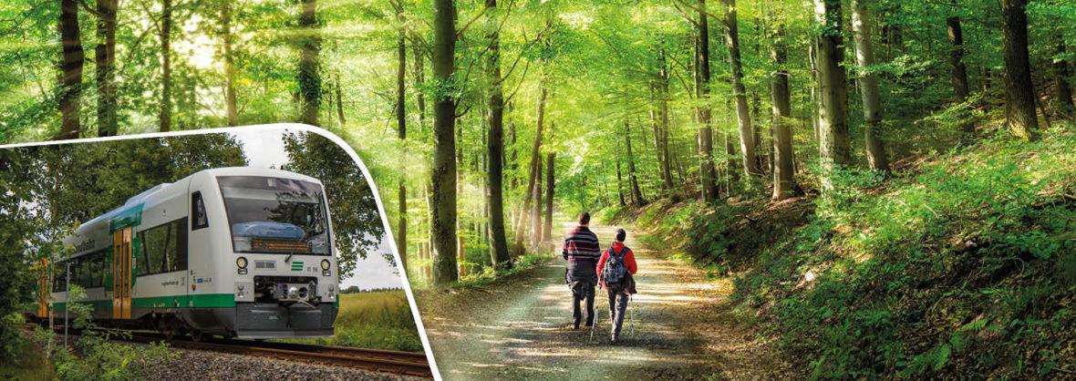 Bahnwandern mit der Vogtlandbahn, die Bahnhöfe und Haltepunkte sind die idealen Aus- oder Endpunkte für Ihre Wanderungen.