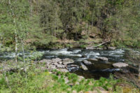 Der Fluss schwarzer Regen der durch Bayerisch Kanada fließt