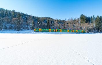 Waldbahn die im Winter auf dem Gleis durch den Wald fährt
